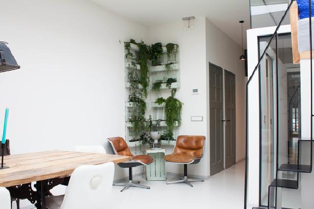 Zuiverende Planten Slaapkamer : Groen in huis de mooiste meest zuiverende kamerplanten
