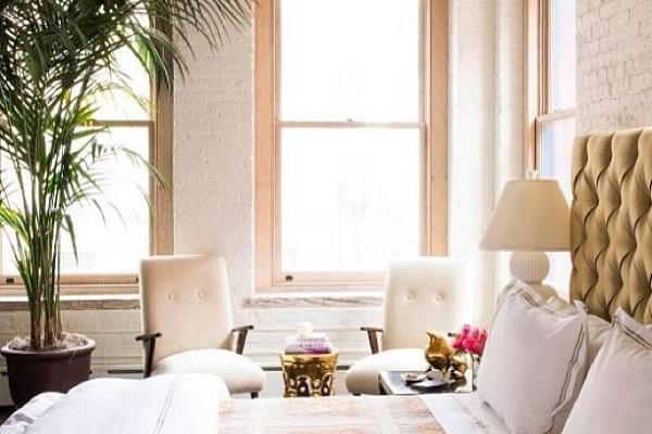 Zuiverende Planten Slaapkamer : Groen in huis: de mooiste, meest ...