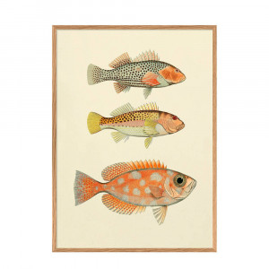 The Dybdahl Co wanddecoratie Fishes (30x40 cm)