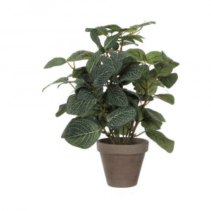 Mica Decorations kunstplant Pilea (h35 cm)