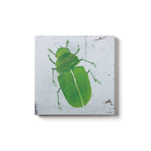 Concrete Prints - Bug01