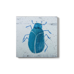 Concrete Prints - Bug02
