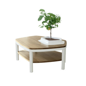 Volcane Pieds Oak Coffee Table