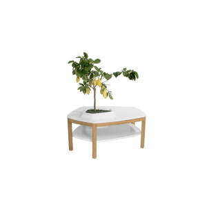 Volcane Pieds Coffee Table - VPB2 White