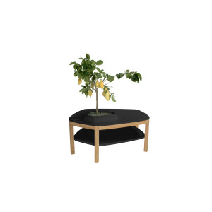 Volcane Pieds Coffee Table - VPN2 Black