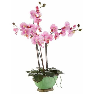 HOME AFFAIRE kunstbloem Orchidee