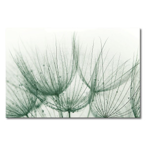 Foto op canvas Detail of Dandelion - canvas - beige/grijs, Ars Natura
